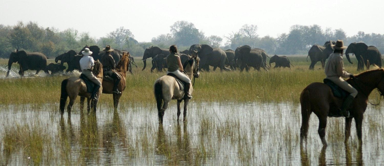 Safaris a Caballo