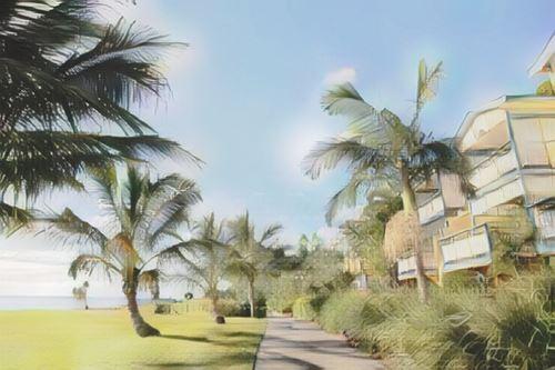 Australia-Australia-australia-tangalooma-island-resort0-low.jpg