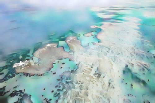 Australia-Gran Barrera de Coral-barrera-mv0-low.jpg