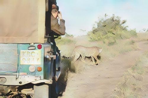 Borana Wildlife Conservacy