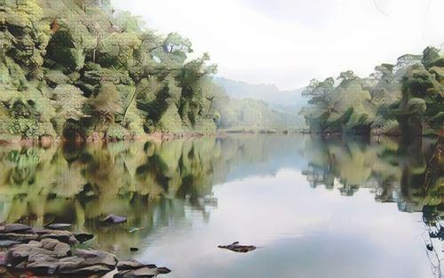 Cardamom National Park