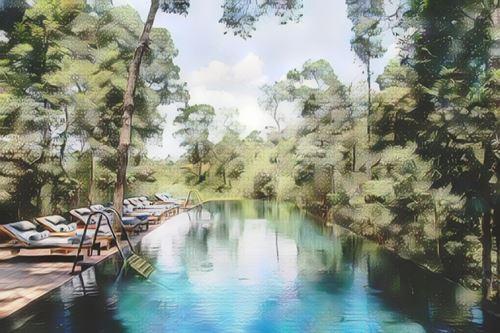 Camboya-Cardamom National Park-cardamom-shinta-mani-wild0-low.jpg