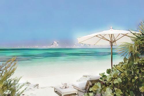Islas Turcas y Caicos-Providenciales-como-parrot-cay0-low.jpg