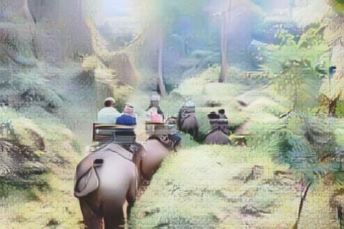 Tailandia-cuevas-chiang-dao-en-elefante0-low.jpg