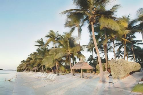 Estados Unidos-Cayos Florida-cyos-florida-amara-cay-resort0-low.jpg