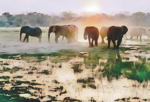 Botswana-delta-okavango0-low.jpg