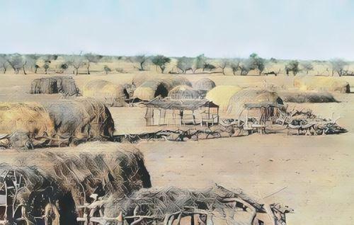 Ferlo Desert