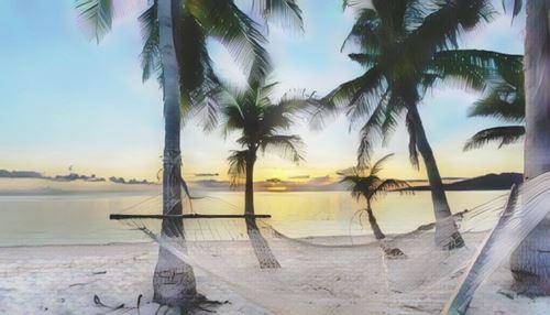 Fiyi-fiji0-low.jpg