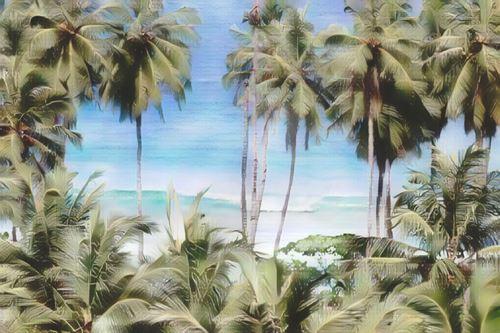 Indonesia-Mentawai-hollow-tree-resort-mentawai22-low.jpg