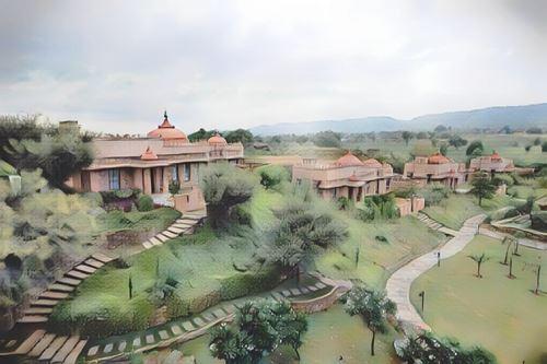 India-Jaipur-jaipur-tree0-low.jpg