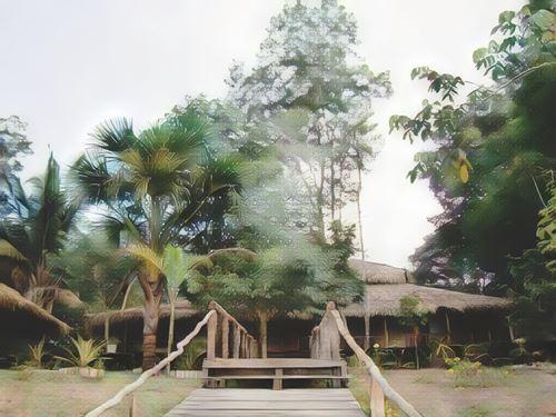 Brasil-Manaos-manaos-amazon-tupana-jungle-lodge0-low.jpg