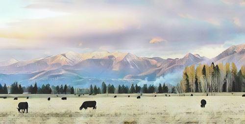 Estados Unidos-montana0-low.jpg