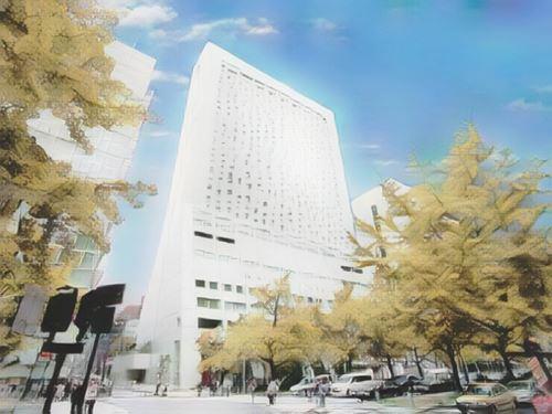 Japón-Osaka-osaka-hotel-nikko-osaka0-low.jpg