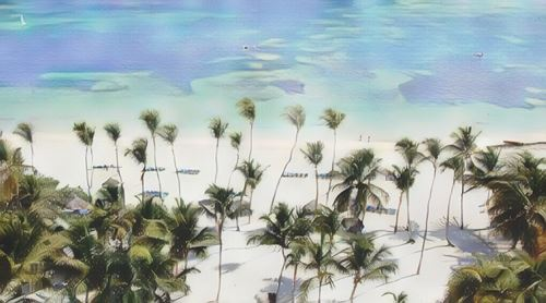 República Dominicana-Punta Cana-punta-cana-the-level-at-melia-caribe-tropical0-low.jpg