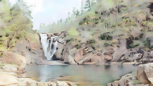 Reserva forestal mountain pine ridge