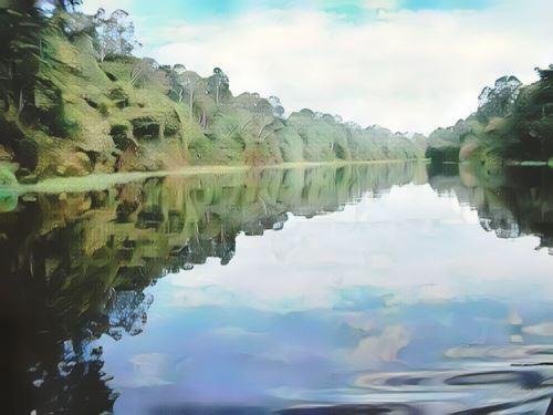 Brasil-rio-negro0-low.jpg