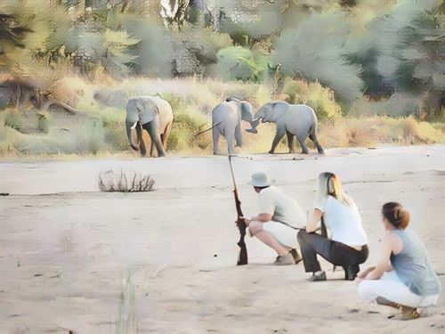 Tanzania-ruaha0-low.jpg