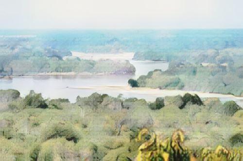 Selous Reserve
