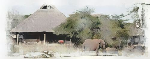 Tanzania-Selous Reserve-selous-siwandu0-low.jpg