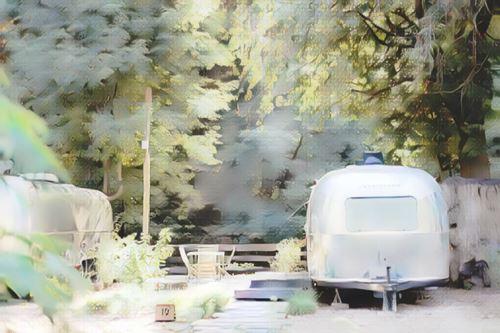Estados Unidos-Sonoma County-sonoma-autocamp-russian-river0-low.jpg