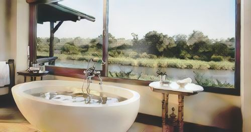 Sudáfrica-Sabi Sands-sudafrica-lion0-low.jpg