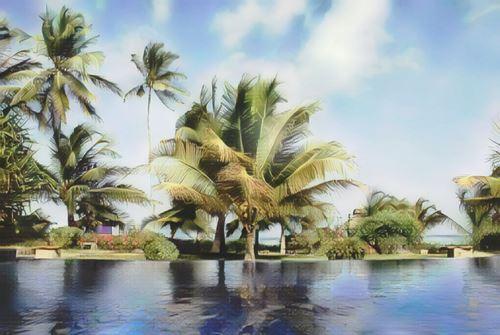 Tanzania-Zanzibar-zanzibar-palms0-low.jpg